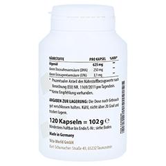 OMEGA-3 vegan Algenöl 625 mg Kapseln 120 Stück - Linke Seite