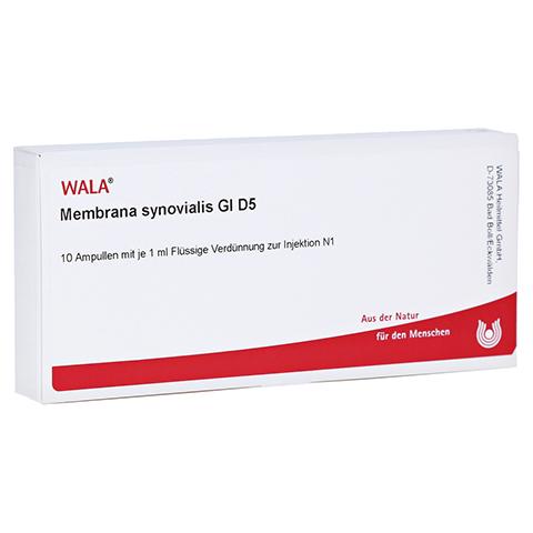 MEMBRANA synovialis GL D 5 Ampullen 10x1 Milliliter N1