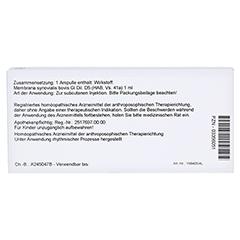 MEMBRANA synovialis GL D 5 Ampullen 10x1 Milliliter N1 - Rückseite