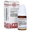 ECHINACEA HAB D 12 Globuli 10 Gramm N1