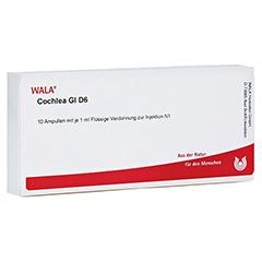 COCHLEA GL D 6 Ampullen 10x1 Milliliter N1