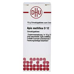APIS MELLIFICA D 12 Globuli 10 Gramm N1 - Vorderseite