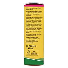 Luvos Heilerde Bio Haut Plus Kapseln 60 Stück - Rechte Seite