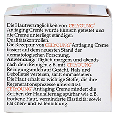 CELYOUNG Antiaging Creme 50 Milliliter - Rechte Seite