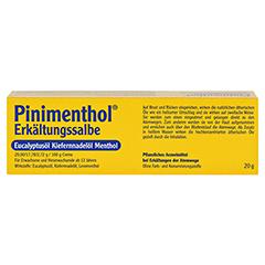 Pinimenthol Erkältungssalbe 20 Gramm N1 - Rückseite