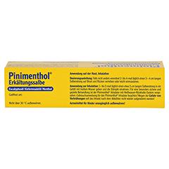 Pinimenthol Erkältungssalbe 20 Gramm N1 - Oberseite