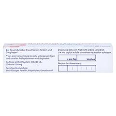 Nystatin Holsten Softpaste 20 Gramm N1 - Oberseite