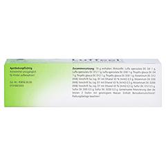 LUFFEEL comp.Heuschnupfen Nasenspray 20 Milliliter N1 - Oberseite
