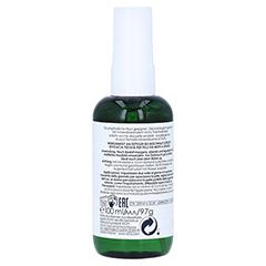 VICHY NORMADERM mattierendes Pflege-Spray 100 Milliliter - Linke Seite