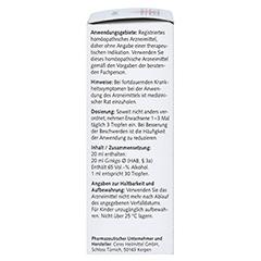 CERES Ginkgo Urtinktur 20 Milliliter N1 - Rechte Seite