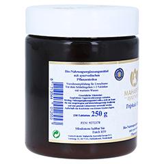 TRIPHALA Plus Tri Clean 505 Tabletten 250 Gramm - Rechte Seite
