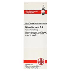 LILIUM TIGRINUM D 6 Dilution 20 Milliliter N1 - Vorderseite
