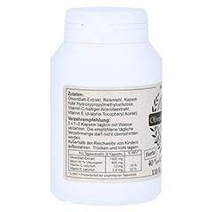 OLIVENBLATT-Extrakt forte 40%+C+E Kapseln 110 Stück - Rechte Seite