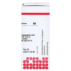 HEPAR SULFURIS C 30 Globuli 10 Gramm N1 - Rechte Seite