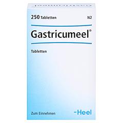 GASTRICUMEEL Tabletten 250 Stück N2 - Vorderseite