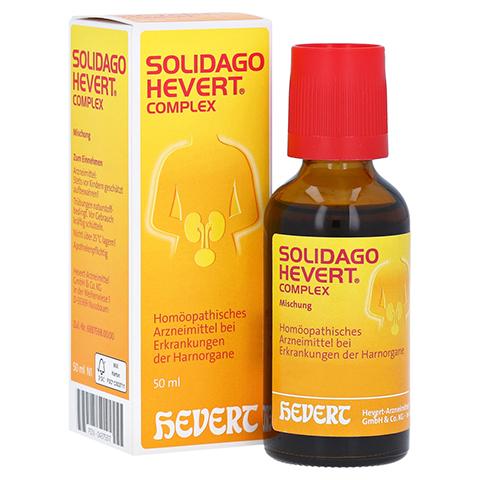 SOLIDAGO HEVERT Complex Tropfen 50 Milliliter N1