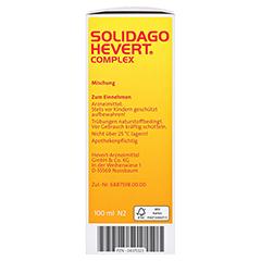 SOLIDAGO HEVERT Complex Tropfen 100 Milliliter N2 - Linke Seite