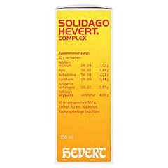SOLIDAGO HEVERT Complex Tropfen 100 Milliliter N2 - Rechte Seite
