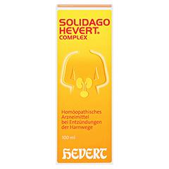 SOLIDAGO HEVERT Complex Tropfen 100 Milliliter N2 - Vorderseite