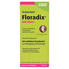 Floradix mit Eisen 250 Milliliter - Vorderseite