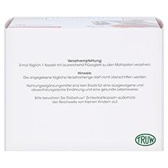Diabetruw Zimtkapseln 180 Stück - Unterseite