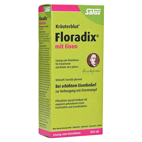Floradix mit Eisen 250 Milliliter