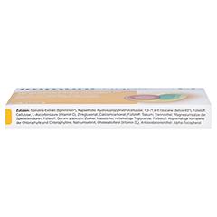 immunLoges 20 Stück - Unterseite