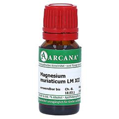 MAGNESIUM MURIATICUM LM 12 Dilution 10 Milliliter N1