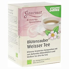 WEISSER TEE Blütenzauber Bio Salus Filterbeutel 15 Stück