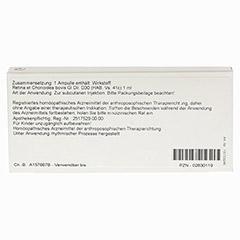 RETINA ET CHORIOIDEA GL D 30 Ampullen 10x1 Milliliter N1 - Rückseite