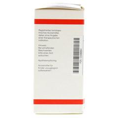 CALADIUM seguinum D 4 Tabletten 200 Stück N2 - Linke Seite