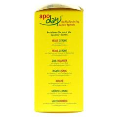 Apoday Heißer Winterapfel Vitamin C Pulver 10x10 Gramm - Rechte Seite