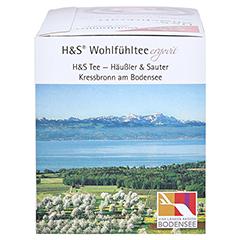 H&S Abwehrkraft Filterbeutel 20 Stück - Rechte Seite