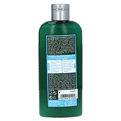 LOGONA Feuchtigkeits-Shampoo 250 Milliliter - Rückseite