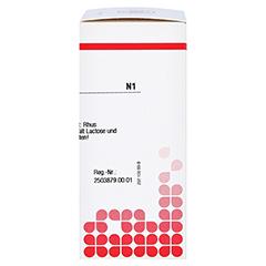 RHUS TOXICODENDRON D 6 Tabletten 80 Stück N1 - Rechte Seite