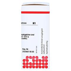 SYMPHYTUM D 12 Globuli 10 Gramm N1 - Rechte Seite