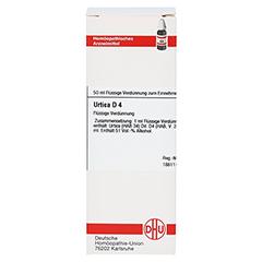 URTICA D 4 Dilution 50 Milliliter N1 - Vorderseite