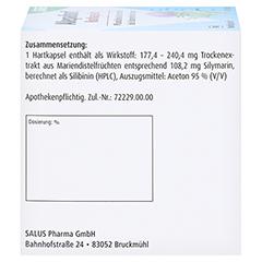 Alepafort 100 Stück N3 - Rechte Seite