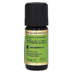PRIMAVERA Eukalyptus Öl kbA Cineol 85% 10 Milliliter - Rechte Seite