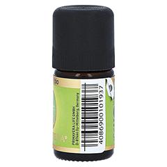 LIMETTE Bio ätherisches Öl 5 Milliliter - Linke Seite