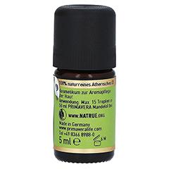PRIMAVERA Eukalyptus Öl kbA Cineol 85% 5 Milliliter - Rechte Seite