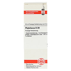 PHYTOLACCA D 30 Dilution 20 Milliliter N1 - Vorderseite