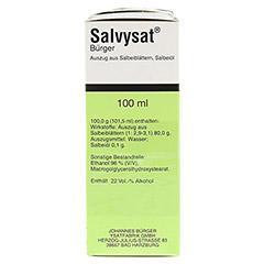 Salvysat Bürger 5x100 Milliliter - Rechte Seite