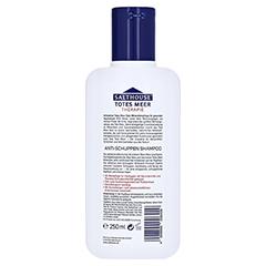 SALTHOUSE TM Therapie Anti-Schuppen Shampoo 250 Milliliter - Rückseite