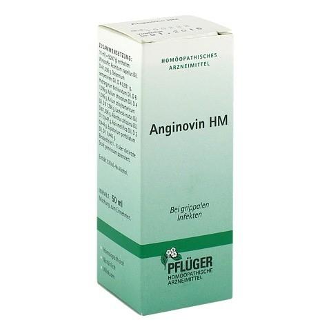 ANGINOVIN HM Tropfen 50 Milliliter N1