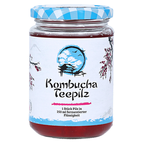 KOMBUCHA TEEPILZ 1 Stück