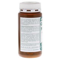 GRÜNLIPPMUSCHEL 500 mg Konzentrat Kapseln 150 Stück - Linke Seite