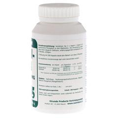 PANGAMSÄURE B15 50 mg vegetarische Kapseln 200 Stück - Rechte Seite