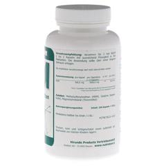 MSM 500 mg Methylsulfonylmethan Kapseln 250 Stück - Rechte Seite