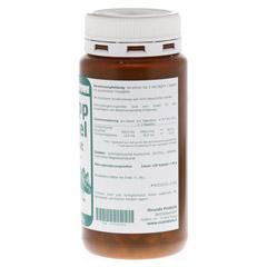 GRÜNLIPPMUSCHEL 500 mg Konzentrat Kapseln 150 Stück - Rechte Seite